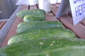 cucumbers3